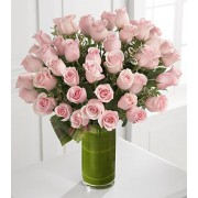 Delighted Luxury Rose Bouquet - 48 Stems of 60-cm Premium Long-Stemmed Roses