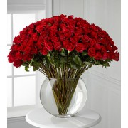 Breathless Luxury Rose Bouquet - 100 Stems of 60-cm Premium Long-Stemmed Roses