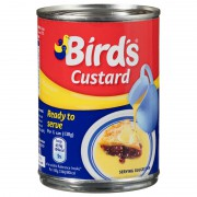 Bird's Ready To Serve Custard