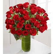 Fate Luxury Rose Bouquet - 48 Stems of 60-cm Premium Long-Stemmed Roses
